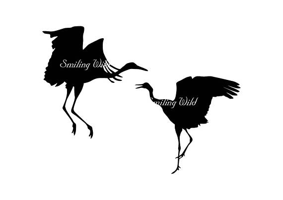 570x403 Crane Bird Svg Clipart Crane Silhouette Digital Bird Printable