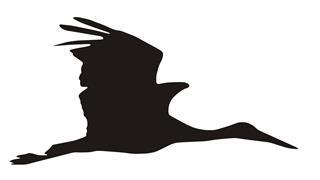320x180 Crane Bird Silhouette Decal Sticker