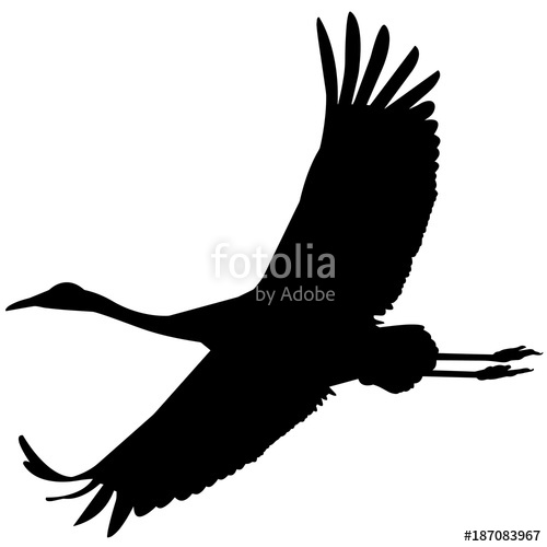500x500 Whooping Crane Silhouette Vector Graphics Stock Image And Royalty