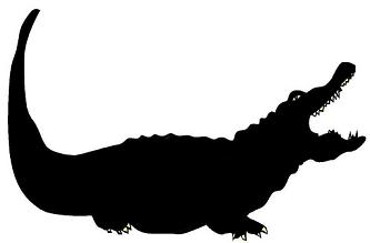 333x219 Crocodile, Animal, Ombres Chinoises, Theatre D`ombres Puppet