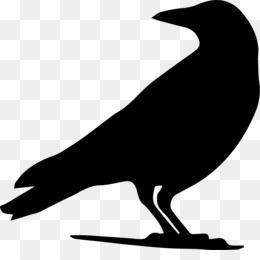 260x260 American Crow Drawing Eating Crow (Feat. Grewsum)