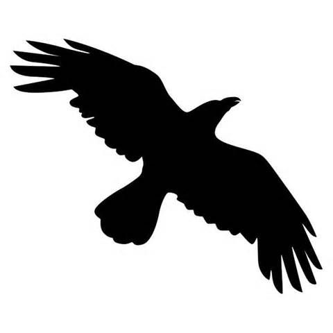 Crow Flying Silhouette