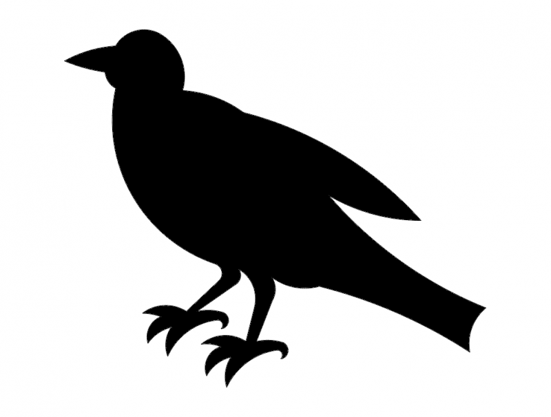 800x606 Crow Silhouette Dxf File Free Download
