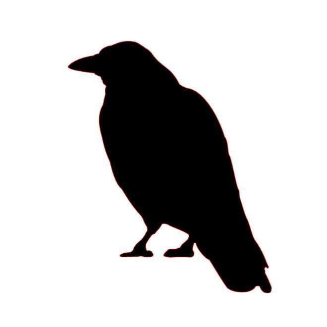 660x660 Black Crow Silhouette