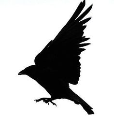 236x273 Stolen Heart Crow Silhouette Cut Paper Greeting Card Purple