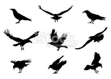 380x271 Crow Outline Tattoo Outline Of Crow Could Be My New Tattoo