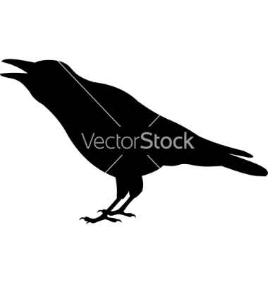 380x400 20 Best Polly Pat Crow Images On Crows, Ravens