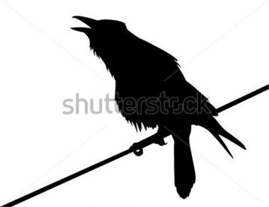 380x293 Vector Silhouette Of The Crow Perched On A Wire And Calling