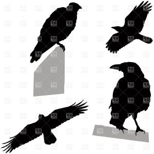 300x300 Crow Raven Flying Vector Silhouette Image Lazttweet