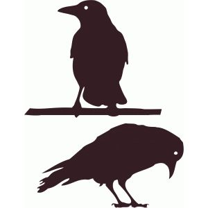 300x300 Crows Silhouette Design, Crows And Silhouettes