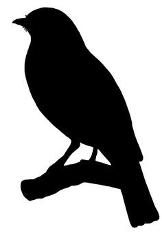 236x345 A Cute Bird Silhouette Templatestencil Sjabloon. You Can Use