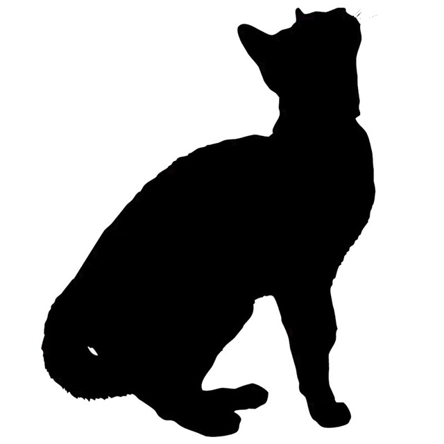 640x640 9.912.7cm Cat Silhouette Kitten Car Decal Window Sticker Cute
