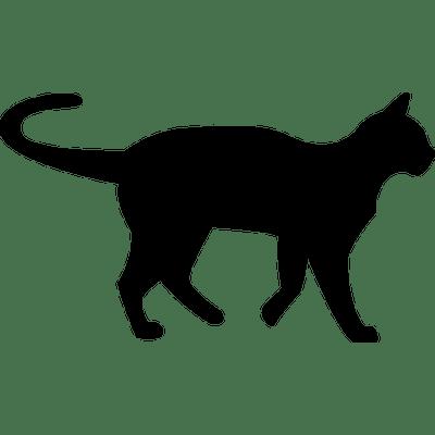 400x400 Black Cat Silhouette Transparent Png