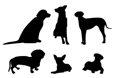 500x323 30 Free Animals Vectors
