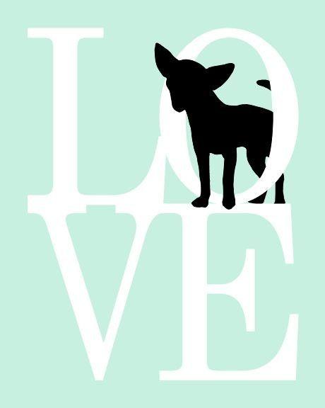 460x576 Chihuahua Art Print