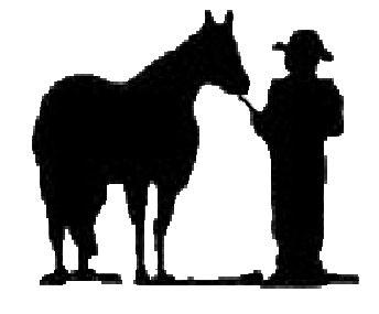 344x285 Ksk Quarter Horses