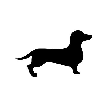 360x360 Dachshund Silhouette Graphic T Shirt By Silly Sausage Redbubble