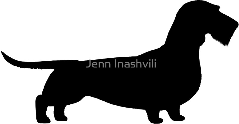 800x417 Wire Haired Dachshund Silhouette(S) Stickers By Jenn Inashvili