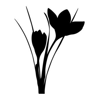 339x340 Free Silhouette Vector Lily, Up