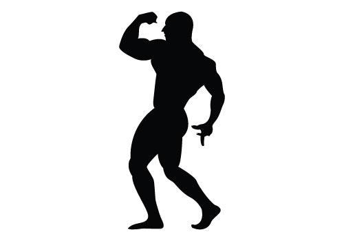 500x350 Silhouette Clipart Bodybuilder'06715