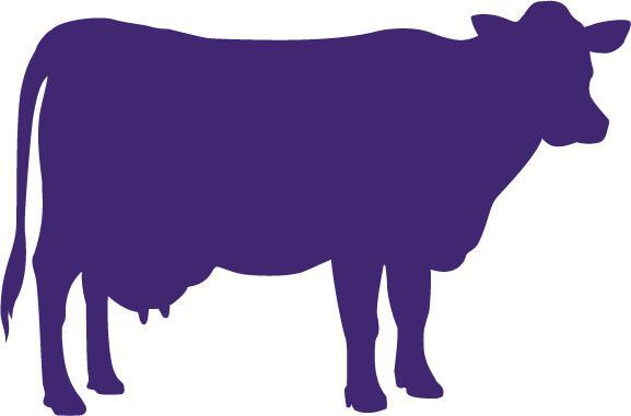 577x381 Dairy Cow Vinyl Decal Sticker Detailed Side Profile Of A Dairy Cow