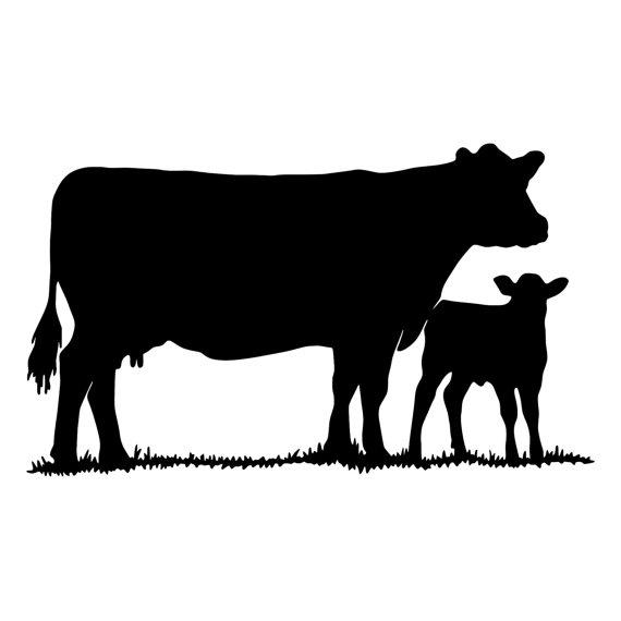 570x570 Cow With Calf Die Cut Decal Car Window Wall Bumper Phone Laptop