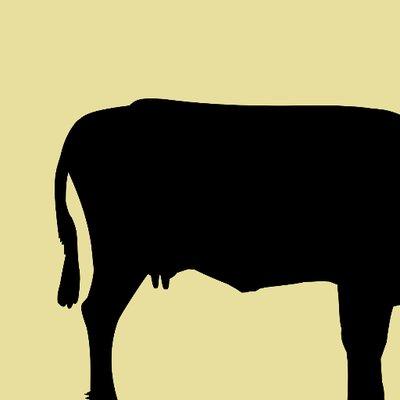 400x400 Beef Amp Dairy Network (@beefanddairy) Twitter