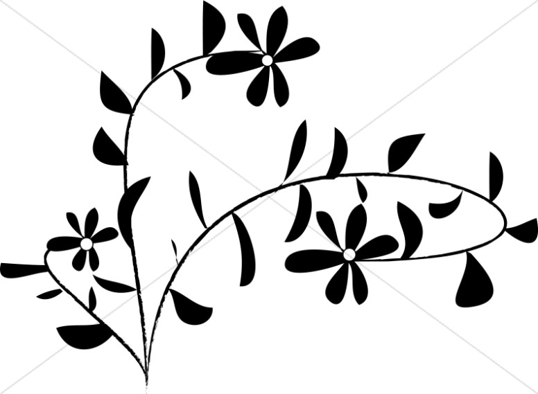 776x569 Black And White Daisy Accent Church Flower Clipart