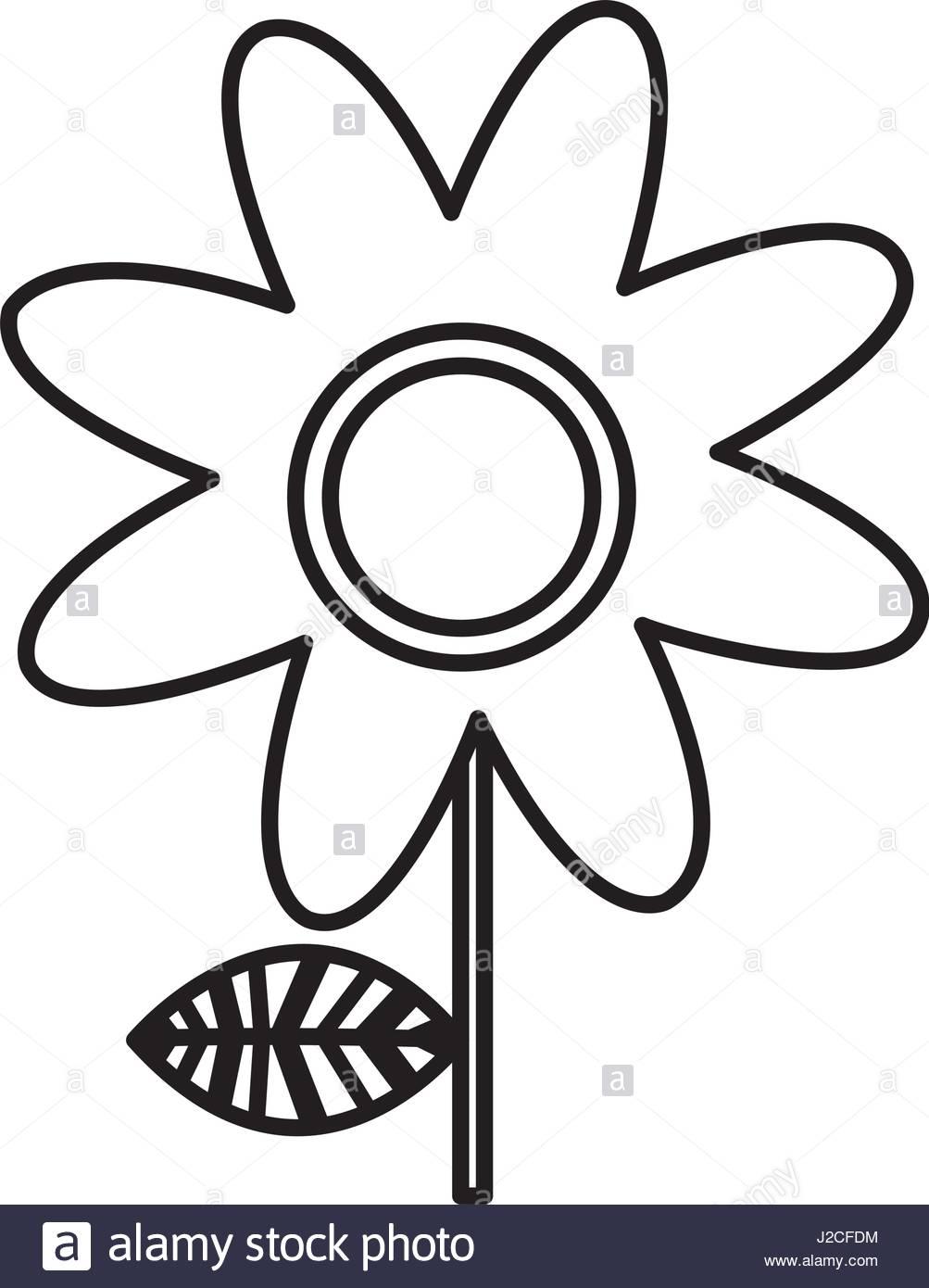 1003x1390 Monochrome Silhouette Of Daisy Flower Stock Vector Art