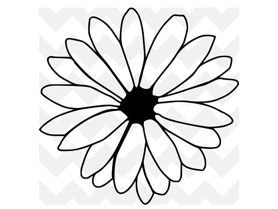 570x428 Daisy Svg Flower Svg Daisy Flower Cut File Cute Svg Cricut