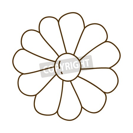 450x450 Vector Of Brown Silhouette With Daisy