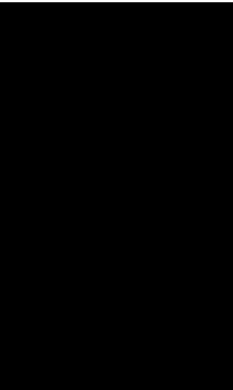 210x352 Dancer Silhouette