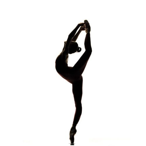 Dancer Leap Silhouette