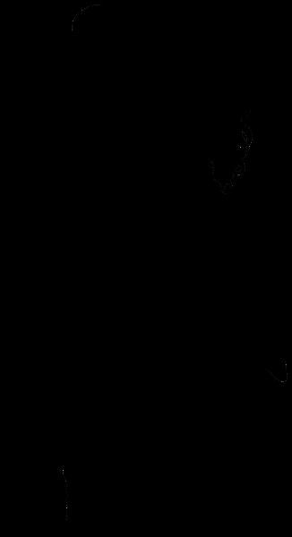 326x600 Couple Dancers Silhouette Png Transparent Clip Art Image Sagome