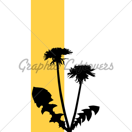 500x500 Dandelion Silhouette Gl Stock Images