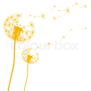 320x320 Hand Drawn Black Silhouette Dandelion On A White Background