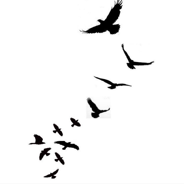 Dandelion Silhouette Stencil