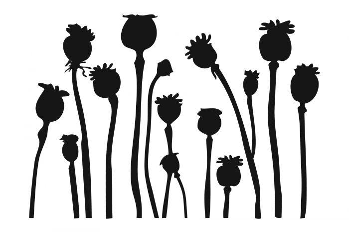 700x467 Poppy Pod Stencil