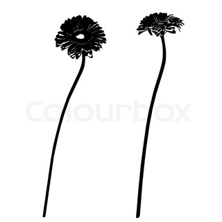 320x320 Sunflower Stencil Silhouette Isolated On White Stock Vector