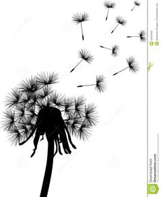 236x288 Dandelion Silhouette Clipart Vector And Illustration. 764
