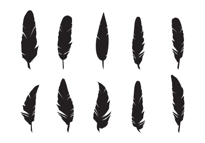 700x490 Feathers Silhouette Vector Set