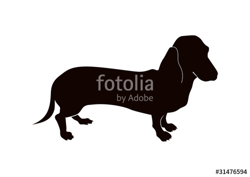500x354 Dachshund Silhouette Stock Image And Royalty Free Vector Files