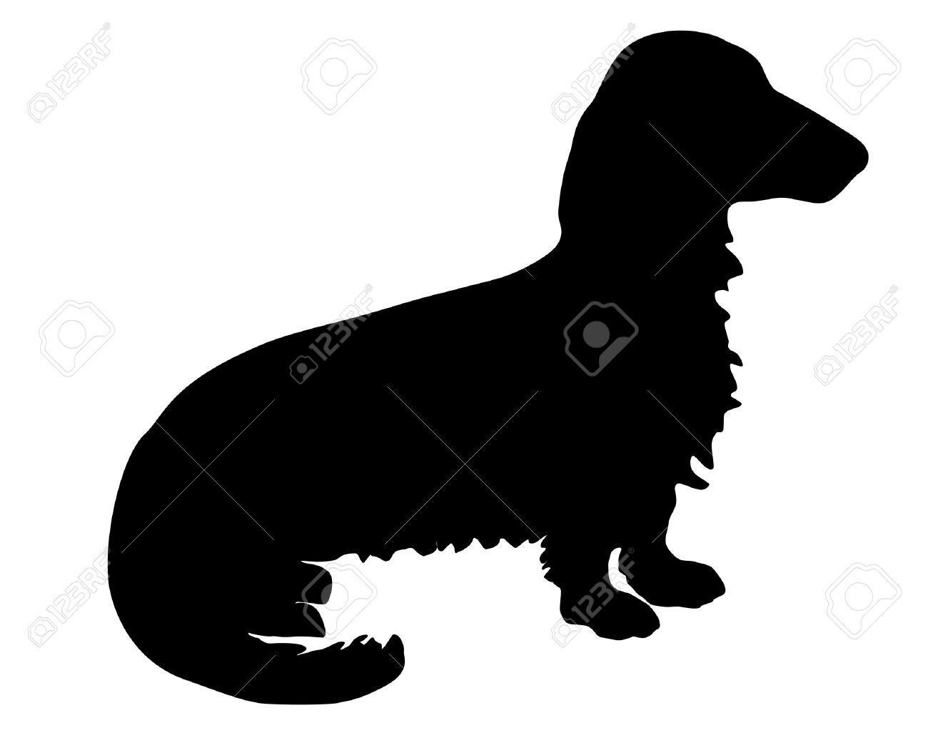 1300x1040 Longhaired Dachshund Silhouette Pups Dachshunds