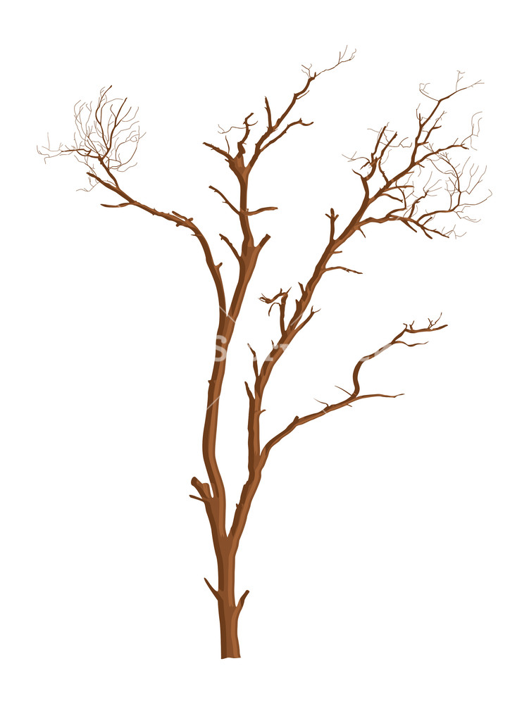 751x1000 Dead Tree Vector Shape Design Royalty Free Stock Image