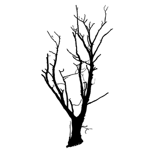 300x300 Dead Tree Optimized Clipart, Cliparts Of Dead Tree Optimized Free