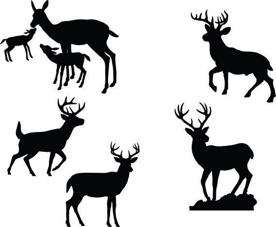 569x468 Deer Buck Fawn Clipart Silhouettes, Eps Dxf Pdf Png Svg Files