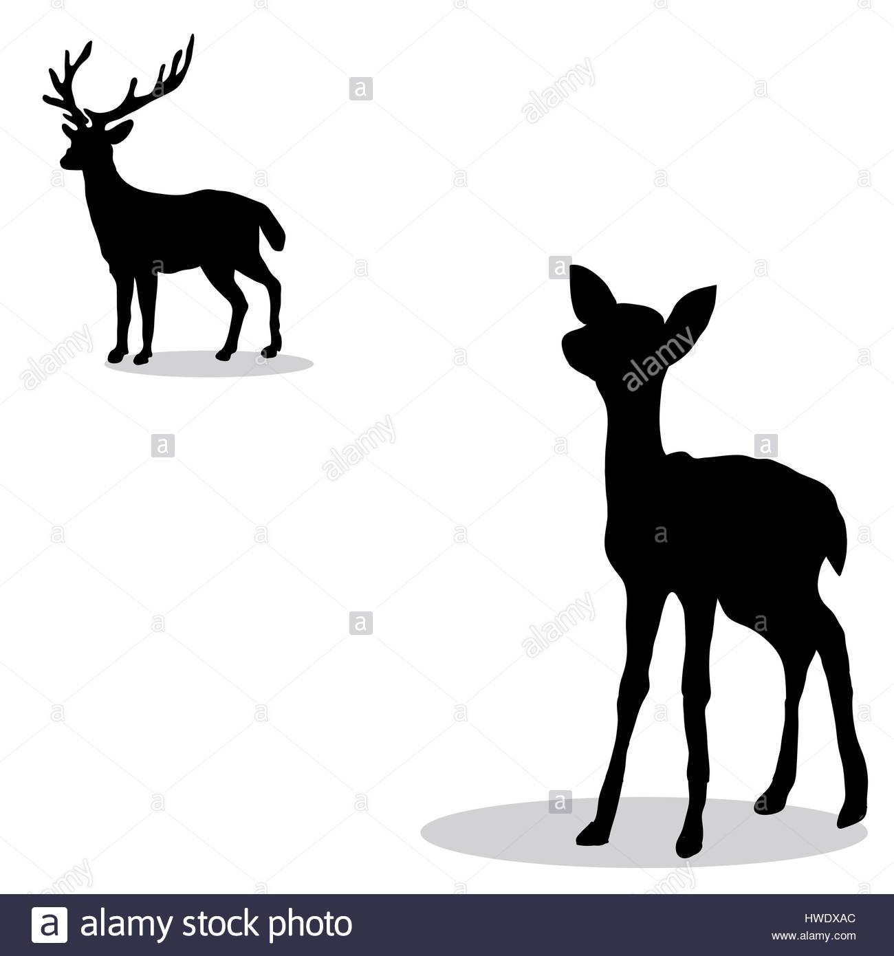 1300x1390 Deer Family Cut Out Stock Images Amp Pictures