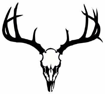 350x312 Deer Skull Clipart