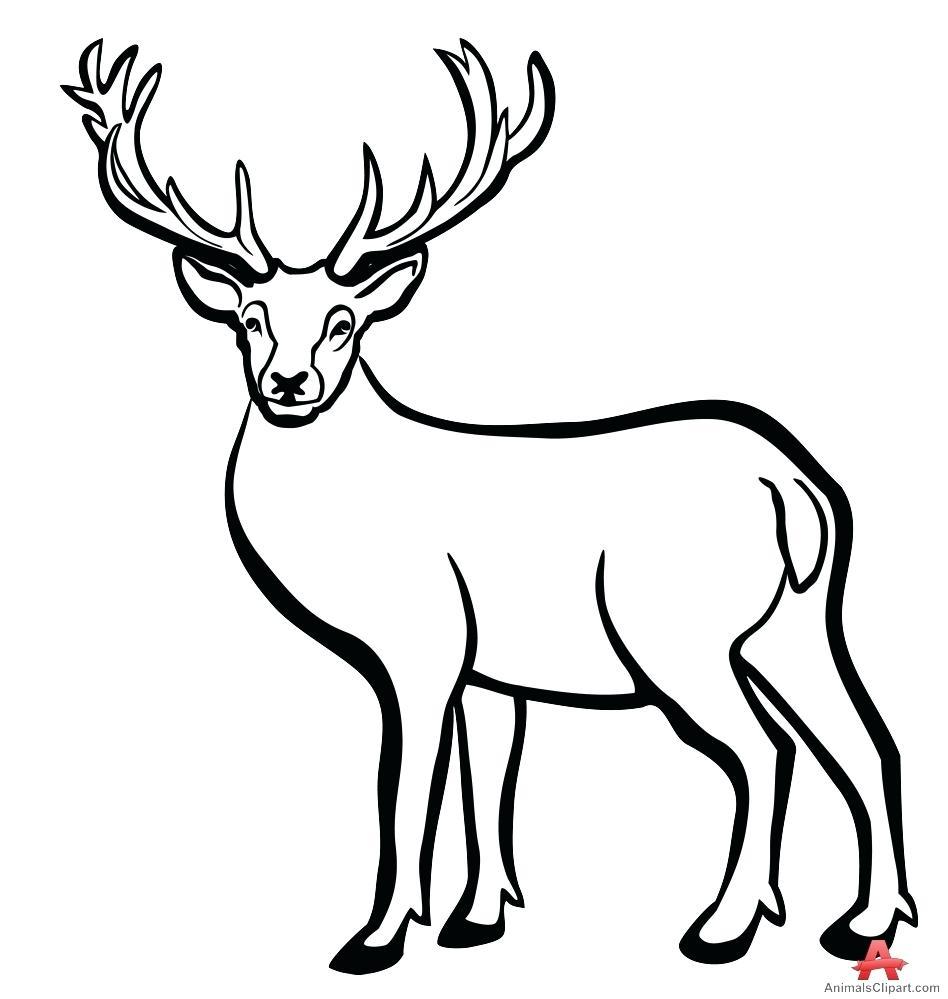 Deer Head Silhouette Outline at GetDrawings | Free download