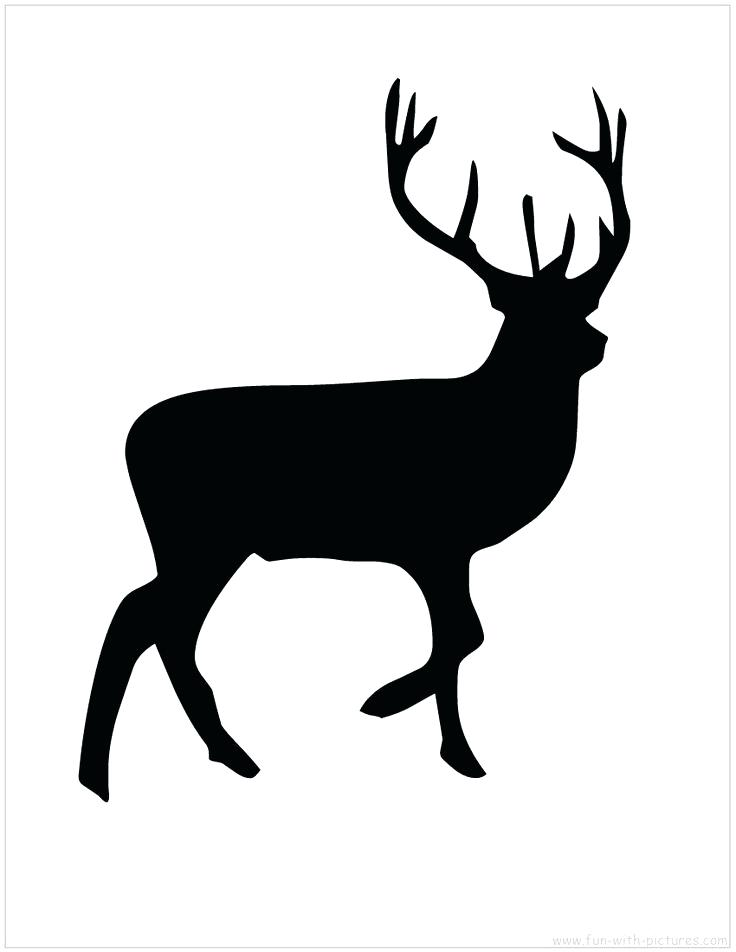736x952 Stunning Reindeer Stencil Template Pictures Inspiration Resume